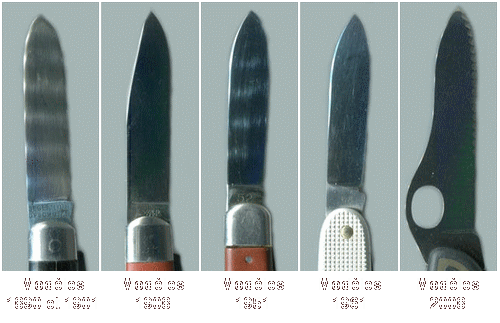 Evolution of blades